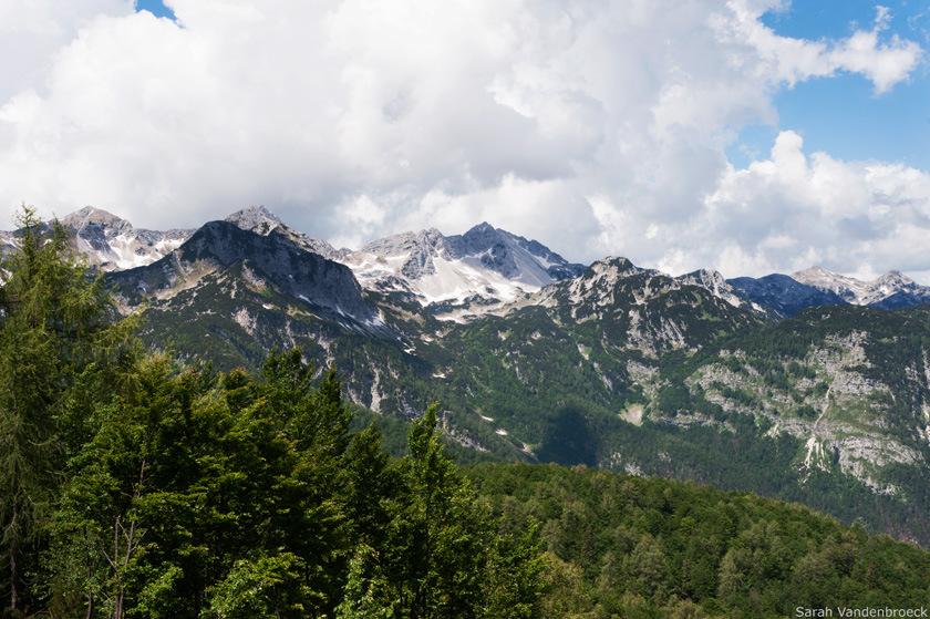 Uitzicht Vogel op de Julische Alpen