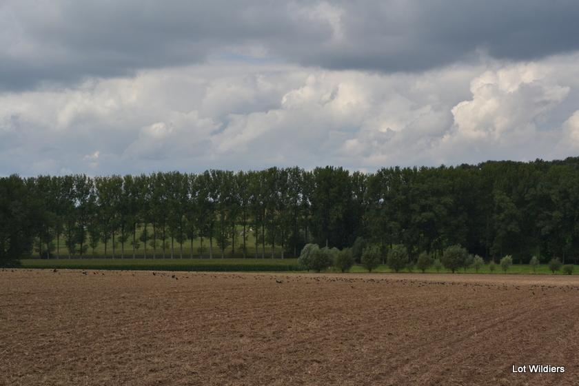 De Vlaamse Ardennen zijn zo mooi.
