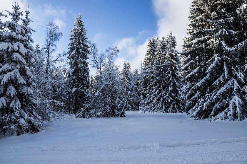 Vooral wanneer het gesneeuw heeft, ziet Thüringen eruit al één groot peperkoekendorp.
