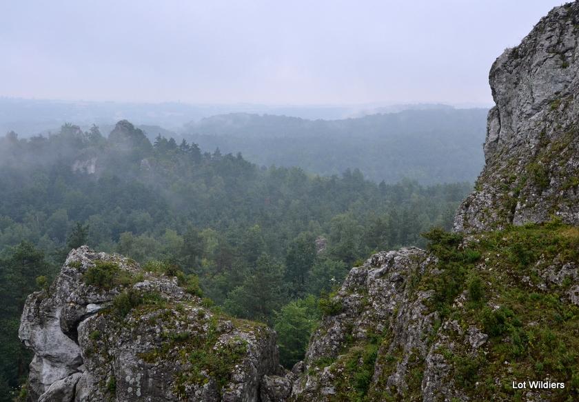 Silezië