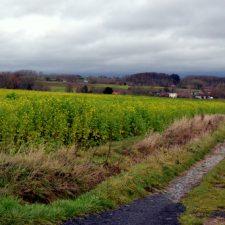 Een herfstweekend in Oost Vlaanderen