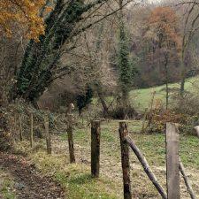 Typisch Belgisch: vakantie in eigen land