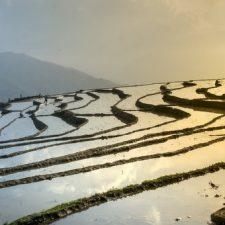 Wat je moet weten voor je naar Vietnam reist