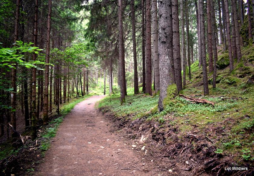 slow trails