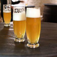 Pilsen: waar bier geboren wordt