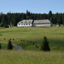 Tsjechische ongerepte natuur op de Golden Trail